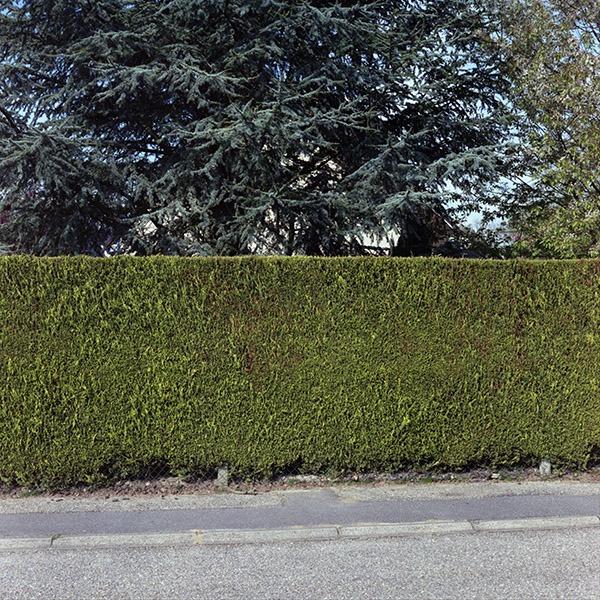 maison-lotissement-beton-vert-05
