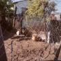 township-masiphumulele-cape-town-xhosa-41